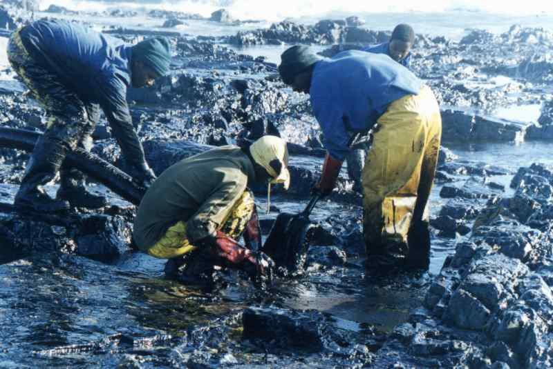 US Dept of Labor's Concerns - Oil Spill Workers' Lack of Proper Training
