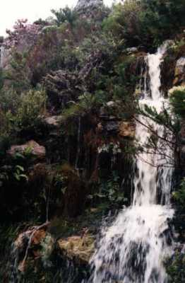 waterfall in Silvermine Nature Reserve