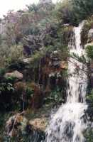waterfall in Silvermine Nature Reserve along Ou Kaapse Weg