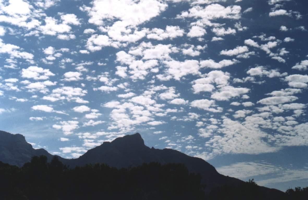 Altocumulus , nuages qui ressemblent à des chose 16_alto_cumulus_dp